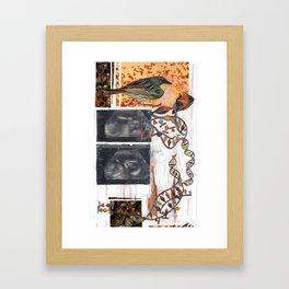 Birds & the Bees Framed Art Print