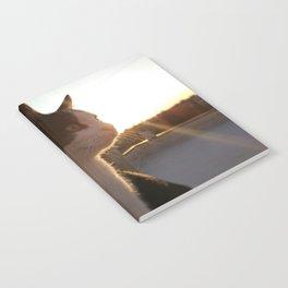 Mind cat Notebook
