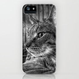 House Cat, Spart, 2017 iPhone Case