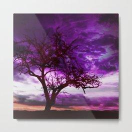 Sunset Dramatic Light Metal Print