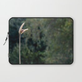 Small Beauty. Laptop Sleeve