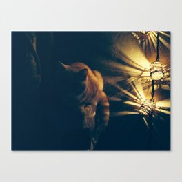 Evening Chat  Canvas Print