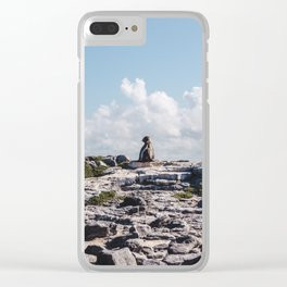 Lone sea lion looks out from rocky cliffside in the Galapagos Islands Clear iPhone Case