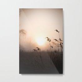 Plantlife Silhouette Metal Print