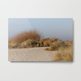 Wild Landscapes at the coast 5 Metal Print