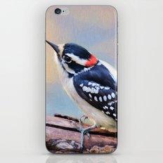 Downy Woodpecker iPhone & iPod Skin
