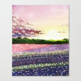Fields of Lilac Canvas Print