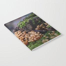 Mushroom Forest Notebook
