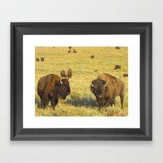 Buffalo Soldiers Framed Art Print