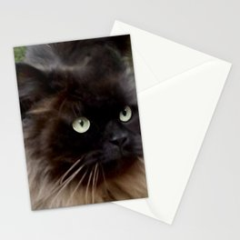 Mr. Batty Stationery Cards