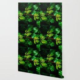 Leaves V9WL Wallpaper