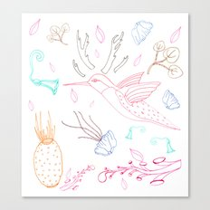 Humming Boyd  Canvas Print