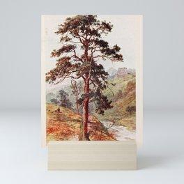 Tree Scots Fir11 Mini Art Print