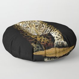 Awesome Phenomenal Adult Jungle Leopard Isolated Ultra HD Floor Pillow
