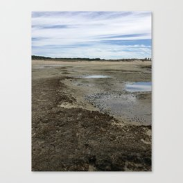Wellfleet Salt Marsh Canvas Print