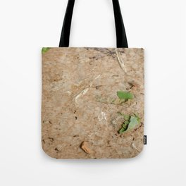 Remains at the Surface II, Killing Fields, Cambodia Tote Bag