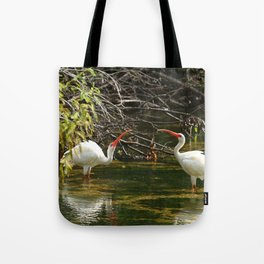 Ibis Dating Place Tote Bag