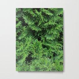 Ever Green Metal Print