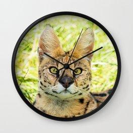 SERVAL BEAUTY Wall Clock