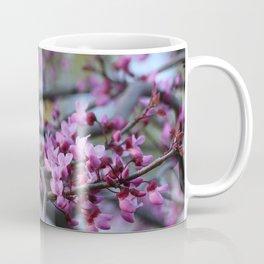 Eastern redbud cascade Coffee Mug