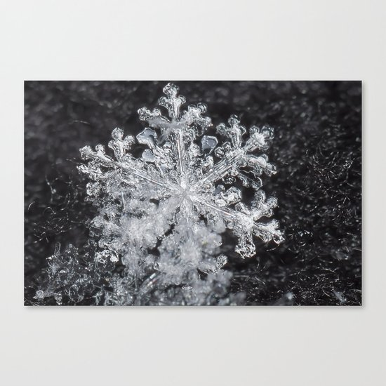 Snowflake Closeup #3 Canvas Print