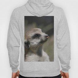 Meerkat20151210 Hoody