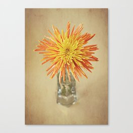 Nature's Firework Canvas Print