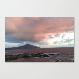 cotton candy skys Canvas Print