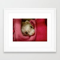 ferret Framed Art Prints featuring Ferret by Sabrina Jennis
