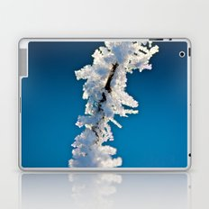 Iced Twig Laptop & iPad Skin