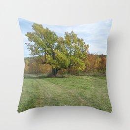 John A. Hutter Memorial Park Throw Pillow