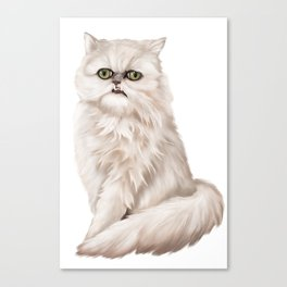 Wilfred Warrior the beautiful cat Canvas Print