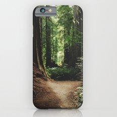Redwood Trail iPhone 6 Slim Case