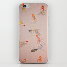 Goldfish Pond iPhone & iPod Skin