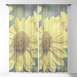 Three yellow flowers Sheer Curtain