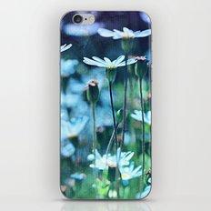 Dreamy Blue Daisies iPhone & iPod Skin