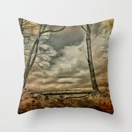 Living the Questions Throw Pillow