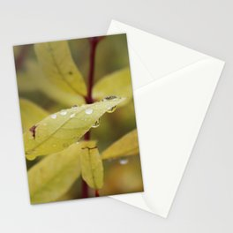 Drop 2 Stationery Cards