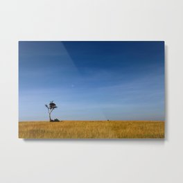 The Lonely Vulture Metal Print