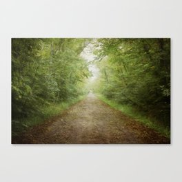 The Road to Somewhere Else Canvas Print