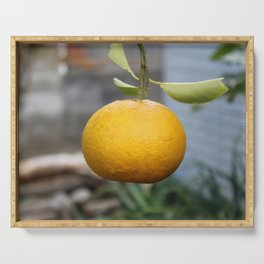 Garden Orange | Osaka Serving Tray