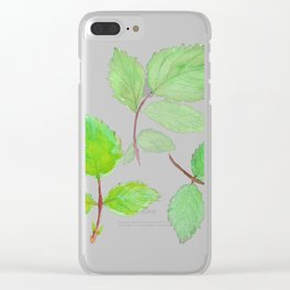 3 green rose leaves watercolor Clear iPhone Case
