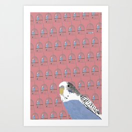 The Budgie Gallery Giftshop Art Print