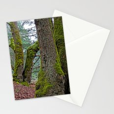 TWO BIG LEAF MAPLE TREES Stationery Cards