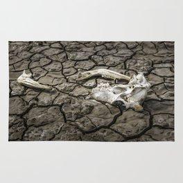 Animal Bones at Mud Cracked Ground Rug