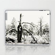 Volcanic Aftermath Laptop & iPad Skin