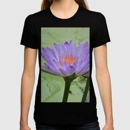 Blue Water Lilies in Hangzhou T-shirt
