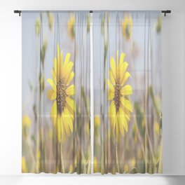 Sunflower - Bright Wildflower on a Summer Day Sheer Curtain