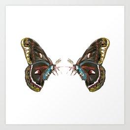 Giant Butterfly  Art Print