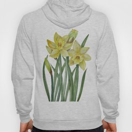 Watercolor Daffodils Botanical Illustration Hoody